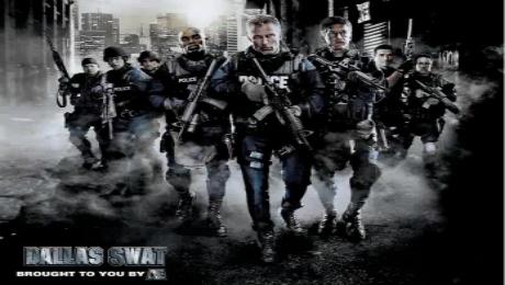 特警小组SWAT模组